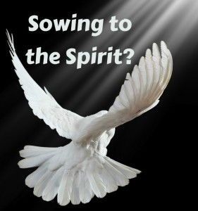 Sowing Spirit