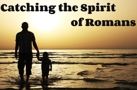 the role and function of the holy spirit in the book of romans essay The godhead (trinity: father, son & holy ghost) article index  when discussing the godhead with others, i have noticed that many christians know only some of the fundamentals to god's triune identity.